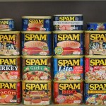 spam-collection-2007-06